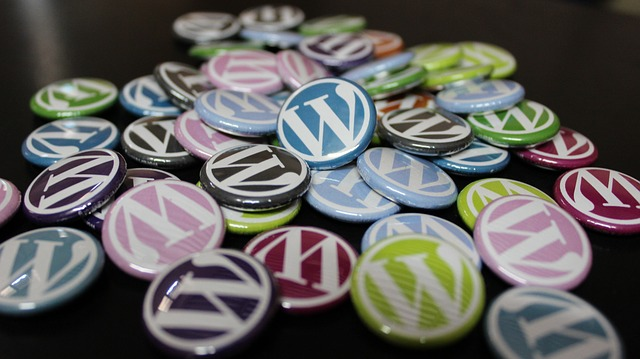 7 Tips για να επιλέξουμε το σωστό WordPress theme
